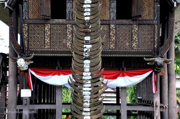 lines & patterns on Toraja's house