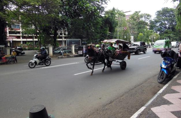 bogor view of juanda street