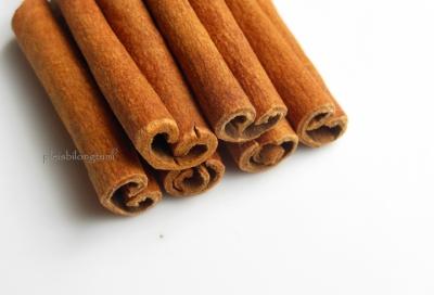 cinnamon bark3